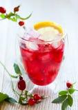 Rose hip tea. Glass of cold rose hip tea stock image