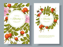 Rose hip vertical banners. Vector rose hip vertical banners on white background. Design for tea, homeopathy, herbal cosmetics,health care products. With place Royalty Free Stock Photos