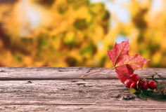 Rose hips and an autumn leaf. Colorful red rose hips and an autumn leaf lying on a wooden rustic table in a colorful fall garden showing the changing seasons Stock Photos