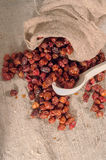 Rose hips. A bag of dog rose-berries Royalty Free Stock Image