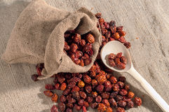 Rose hips. A bag of dogrose berries and wooden spoon Stock Image