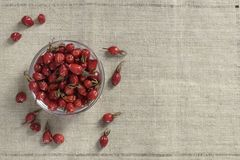 Rose hips in a bowl stock photography