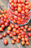 Rose hips in a glass jar Stock Image