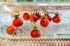 Rose hips from Rosa rugosa on a glass plate. Close up Stock Images