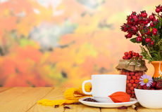 Rose hips, rowan berries,  cup  tea on  background  autumn leaves. Stock Photography