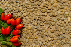 Rose Hips On Stone Floor Background Stock Photography