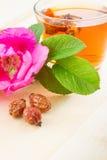 Rose hips tea Stock Images