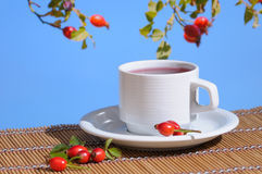 Rose-hips tea outdoor Royalty Free Stock Image