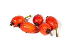Rose hips on a white background Stock Photo