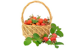 Rose hips in the wicker basket Royalty Free Stock Photography
