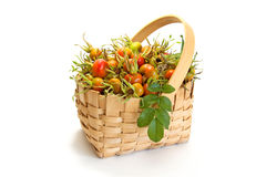 Rose hips in wicker basket isolated on white Stock Photo