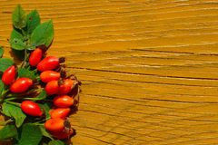 Rose Hips On Yellow Wood Stock Photos