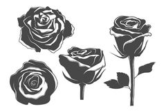 Rose icons, vintage and tattoo style illustrations vector illustration