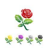 Rose Illustration Image stock