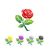 Rose illustration. Vector of rose illustration. Multicolor roses illustration Stock Image