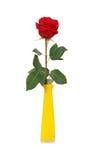 Rose im Vase Stockbild