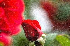 Rose Impressions Stock Image