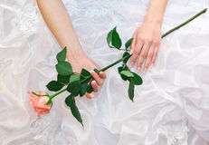 Rose In Bride Hands Royalty Free Stock Photography