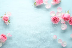 Free Rose In Water Stock Photos - 70121483