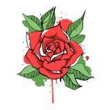 Rose ink and splash. Vector illustration isolated on white background Royalty Free Illustration