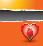 Rose inside heart on orange ripped banner Stock Photography