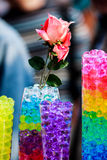 Rose in jar with colorful water balls royalty free stock photo