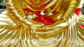 Rose and jasmine on the golden Buddha royalty free stock image
