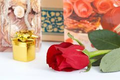 Rose and jewelry Stock Photography