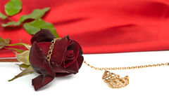Rose and jewelry Stock Image