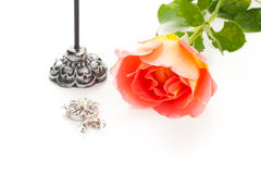 Rose with jewelry Royalty Free Stock Photography