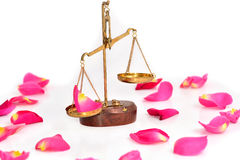 Rose and justice scales on isolated Royalty Free Stock Photo