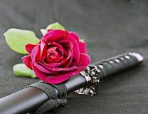 Rose and katana Stock Images
