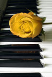 Rose and keys Royalty Free Stock Photography