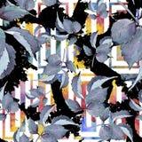 rose kolorowa Kwiecisty botaniczny kwiat Bezszwowy tło wzór ilustracji