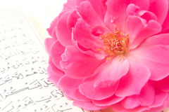 Rose on the Koran Royalty Free Stock Photography