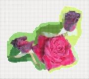 Rose Kreuzstich auf Segeltuch Stockbild