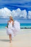 rose kvinna för härlig brudklänning Arkivbild