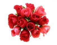 rose kwiaty Zdjęcie Royalty Free