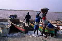 Rose lake - Senegal Royalty Free Stock Photography