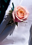 Rose Lapel Stock Fotografie