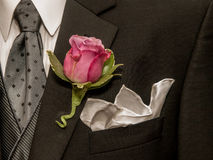 Rose on Lapel Stock Image