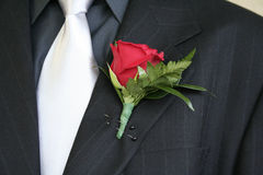 Rose lapel suit. Rose pinned to the lapel of a pin striped suit Royalty Free Stock Image