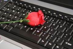 ROSE ON A LAPTOP Royalty Free Stock Images