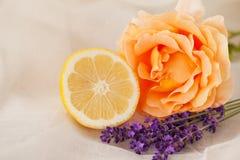 Rose, lavanda y limón aromatherapy Imágenes de archivo libres de regalías