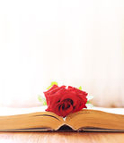 The rose lays on the book Stock Images