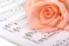 The rose lays on a musical book Royalty Free Stock Images