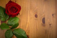 Rose And Leaf On Wood Backgound Photo libre de droits