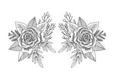Rose and leafs black and white vector Stock Image