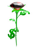 Rose from leaves in the form dollar Stock Photo