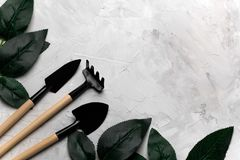 Rose leaves and garden tools frame, spring gardening concept. Top view concrete background with rose leaves and garden tools frame, spring gardening concept Stock Photos